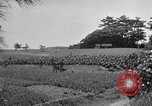 Image of Ryukyu Campaign Pacific Theater, 1945, second 48 stock footage video 65675072980