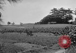 Image of Ryukyu Campaign Pacific Theater, 1945, second 49 stock footage video 65675072980