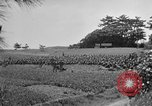 Image of Ryukyu Campaign Pacific Theater, 1945, second 50 stock footage video 65675072980