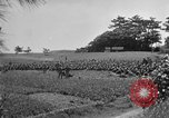 Image of Ryukyu Campaign Pacific Theater, 1945, second 51 stock footage video 65675072980