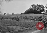 Image of Ryukyu Campaign Pacific Theater, 1945, second 52 stock footage video 65675072980