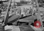 Image of Allied Invasion Paris France, 1944, second 19 stock footage video 65675073008