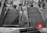 Image of Allied Invasion Paris France, 1944, second 24 stock footage video 65675073008
