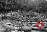 Image of Allied Invasion Paris France, 1944, second 39 stock footage video 65675073008
