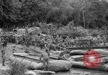 Image of Allied Invasion Paris France, 1944, second 40 stock footage video 65675073008
