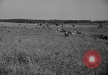 Image of 3rd Army Division troops Fort Lewis Washington USA, 1937, second 57 stock footage video 65675073028