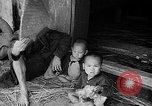 Image of French operations Tonkin French Indochina, 1949, second 28 stock footage video 65675073082