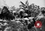 Image of French operations Tonkin French Indochina, 1949, second 33 stock footage video 65675073082