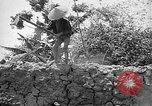 Image of French operations Tonkin French Indochina, 1949, second 36 stock footage video 65675073082