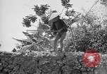 Image of French operations Tonkin French Indochina, 1949, second 38 stock footage video 65675073082