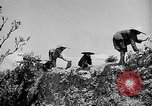 Image of French operations Tonkin French Indochina, 1949, second 46 stock footage video 65675073082