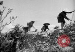 Image of French operations Tonkin French Indochina, 1949, second 48 stock footage video 65675073082