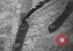 Image of lake freighters Quebec Canada Lachine, 1936, second 24 stock footage video 65675073142