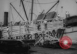 Image of shipment of livestock United States USA, 1945, second 21 stock footage video 65675073173