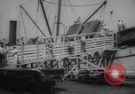 Image of shipment of livestock United States USA, 1945, second 22 stock footage video 65675073173