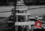 Image of shipment of livestock United States USA, 1945, second 28 stock footage video 65675073173