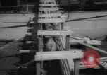 Image of shipment of livestock United States USA, 1945, second 29 stock footage video 65675073173