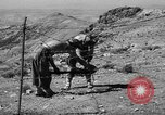 Image of French fortifications Algeria, 1954, second 34 stock footage video 65675073193