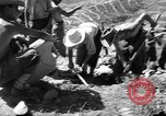 Image of French fortifications Algeria, 1954, second 48 stock footage video 65675073193