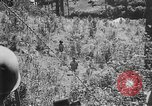 Image of Filipino soldiers Baguio Philippine Islands, 1945, second 6 stock footage video 65675073351