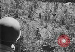 Image of Filipino soldiers Baguio Philippine Islands, 1945, second 12 stock footage video 65675073351