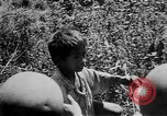 Image of Filipino soldiers Baguio Philippine Islands, 1945, second 25 stock footage video 65675073351