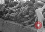 Image of Buchenwald Concentration Camp Germany, 1945, second 29 stock footage video 65675073354