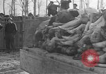 Image of Buchenwald Concentration Camp Germany, 1945, second 34 stock footage video 65675073354