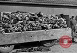 Image of Buchenwald Concentration Camp Germany, 1945, second 49 stock footage video 65675073354