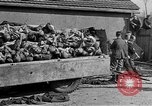 Image of Buchenwald Concentration Camp Germany, 1945, second 50 stock footage video 65675073354