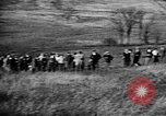 Image of Cocker Spaniels Verbank New York USA, 1935, second 51 stock footage video 65675073362