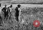 Image of Cocker Spaniels Verbank New York USA, 1935, second 11 stock footage video 65675073363