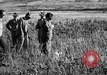 Image of Cocker Spaniels Verbank New York USA, 1935, second 12 stock footage video 65675073363