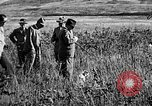 Image of Cocker Spaniels Verbank New York USA, 1935, second 13 stock footage video 65675073363