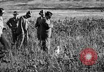 Image of Cocker Spaniels Verbank New York USA, 1935, second 14 stock footage video 65675073363
