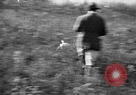 Image of Cocker Spaniels Verbank New York USA, 1935, second 22 stock footage video 65675073363