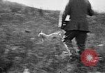 Image of Cocker Spaniels Verbank New York USA, 1935, second 30 stock footage video 65675073363
