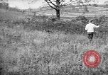 Image of English Springer Spaniels Verbank New York USA, 1935, second 59 stock footage video 65675073365