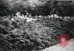 Image of thieves steal clothes United States USA, 1904, second 41 stock footage video 65675073379