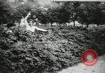 Image of thieves steal clothes United States USA, 1904, second 42 stock footage video 65675073379