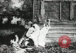Image of thieves steal clothes United States USA, 1904, second 55 stock footage video 65675073379