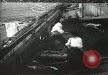 Image of Shipwreck survivors United States USA, 1902, second 12 stock footage video 65675073388