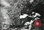 Image of Shipwreck survivors United States USA, 1902, second 30 stock footage video 65675073388