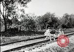 Image of Fictional movie from early in 20th Century United States USA, 1910, second 13 stock footage video 65675073424