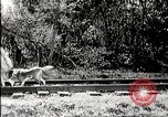 Image of Fictional movie from early in 20th Century United States USA, 1910, second 45 stock footage video 65675073424