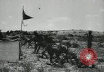 Image of American soldiers United States USA, 1935, second 7 stock footage video 65675073568