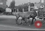 Image of Evacuees France, 1940, second 25 stock footage video 65675073797