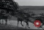 Image of German troops France, 1940, second 43 stock footage video 65675073799