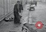 Image of emaciated corpses Germany, 1945, second 18 stock footage video 65675073860