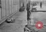 Image of emaciated corpses Germany, 1945, second 23 stock footage video 65675073860